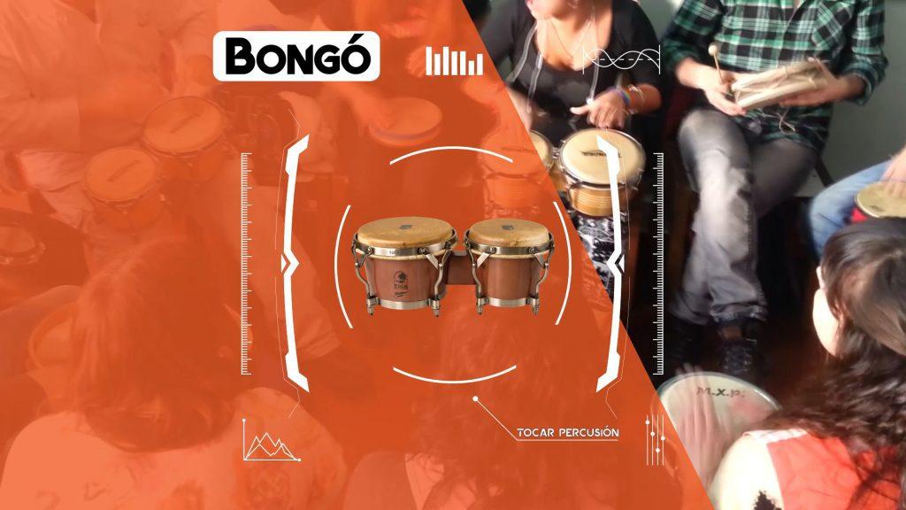 Tocar-Percusion-Cual-es-el-mejor-instrumento-para-empezar-a-aprender-a-tocar-percusion-Bongo